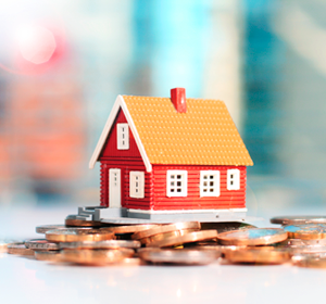 Buying the property for investment purposes