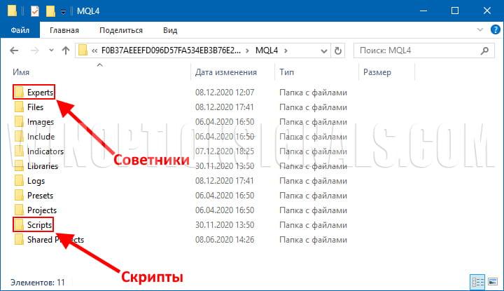 папки советников и скриптов в mt4