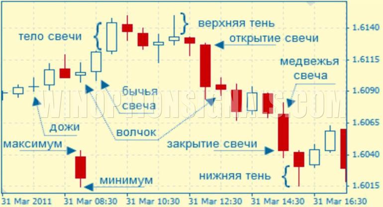 график курса
