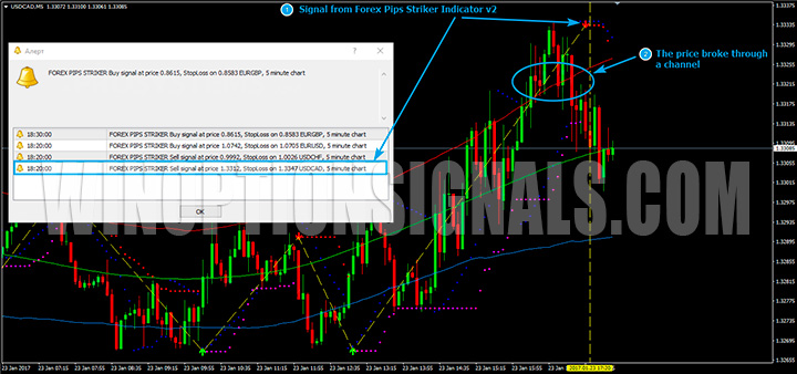 Put сигнал Forex Pips Striker
