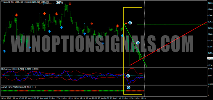 Put сигналы на шаблоне Market Scanner