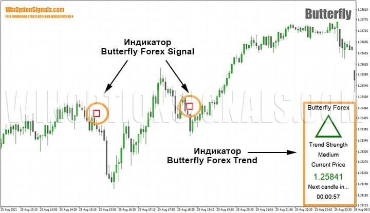 индикаторы стратегии для бинарных опционов Butterfly