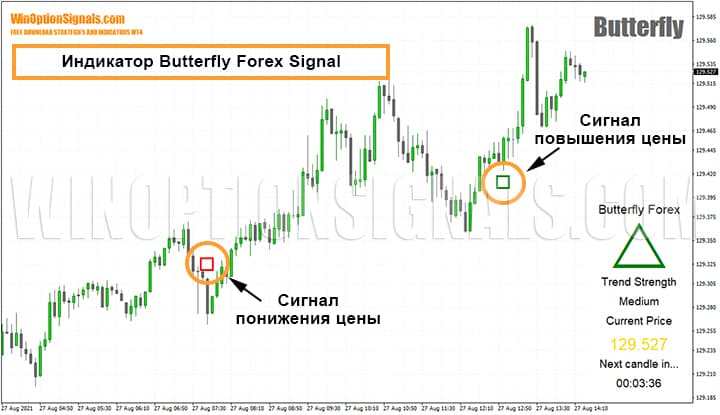 Индикатор Butterfly Forex Signal