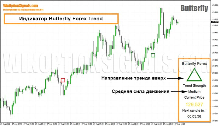 Индикатор Butterfly Forex Trend